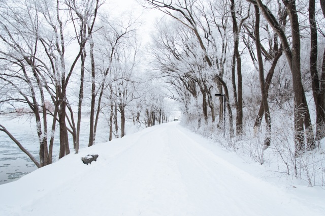 winterbreak